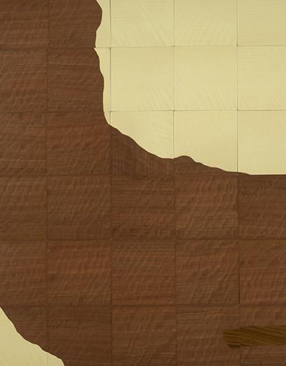 canyon_815x1041